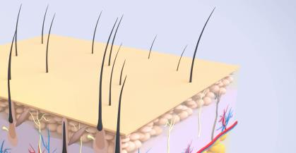 三维医学动画制作需要注意什么?